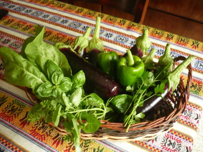 Vegetales orgánicos, blog ECOSER.